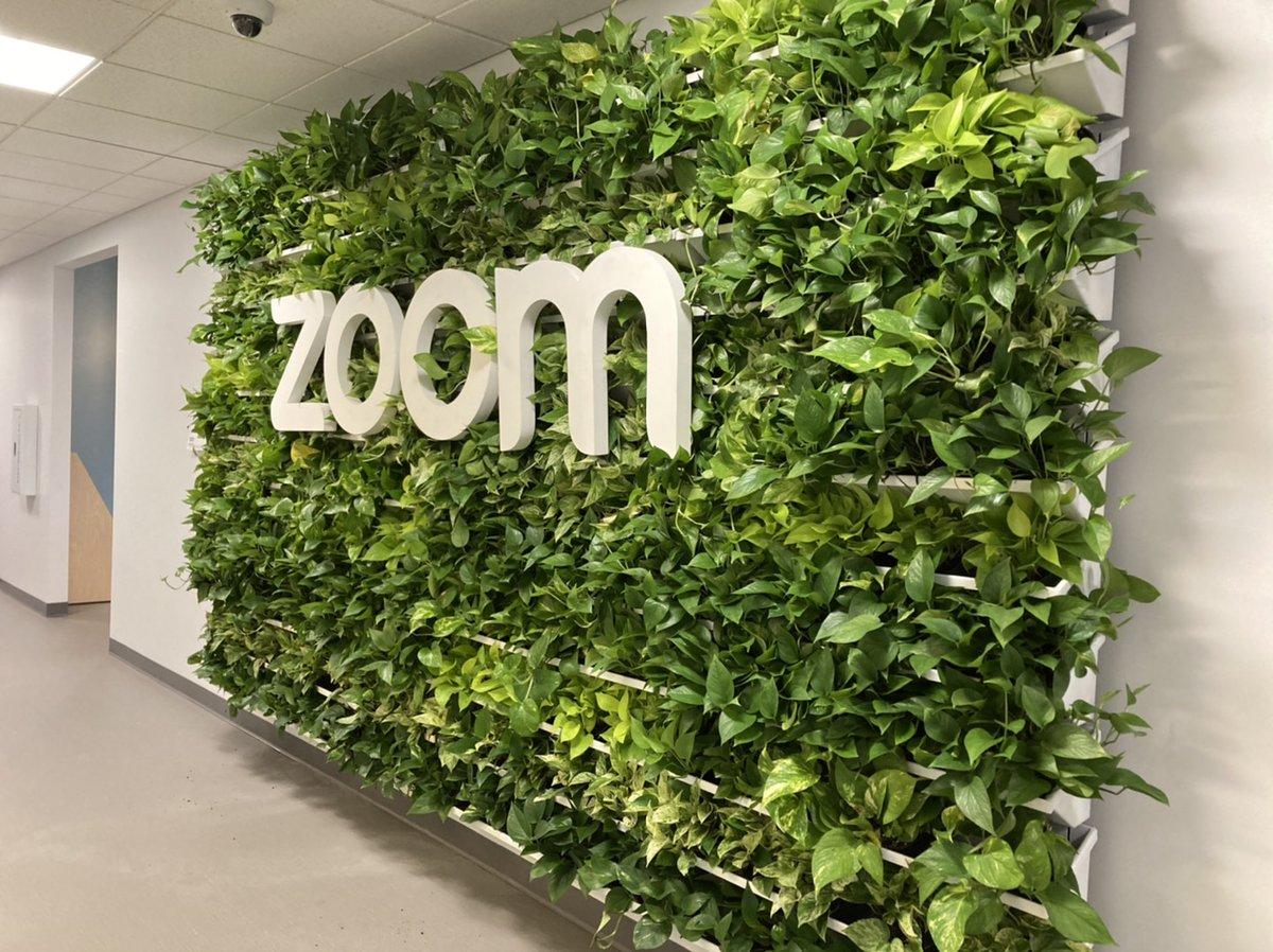 zoom greenery
