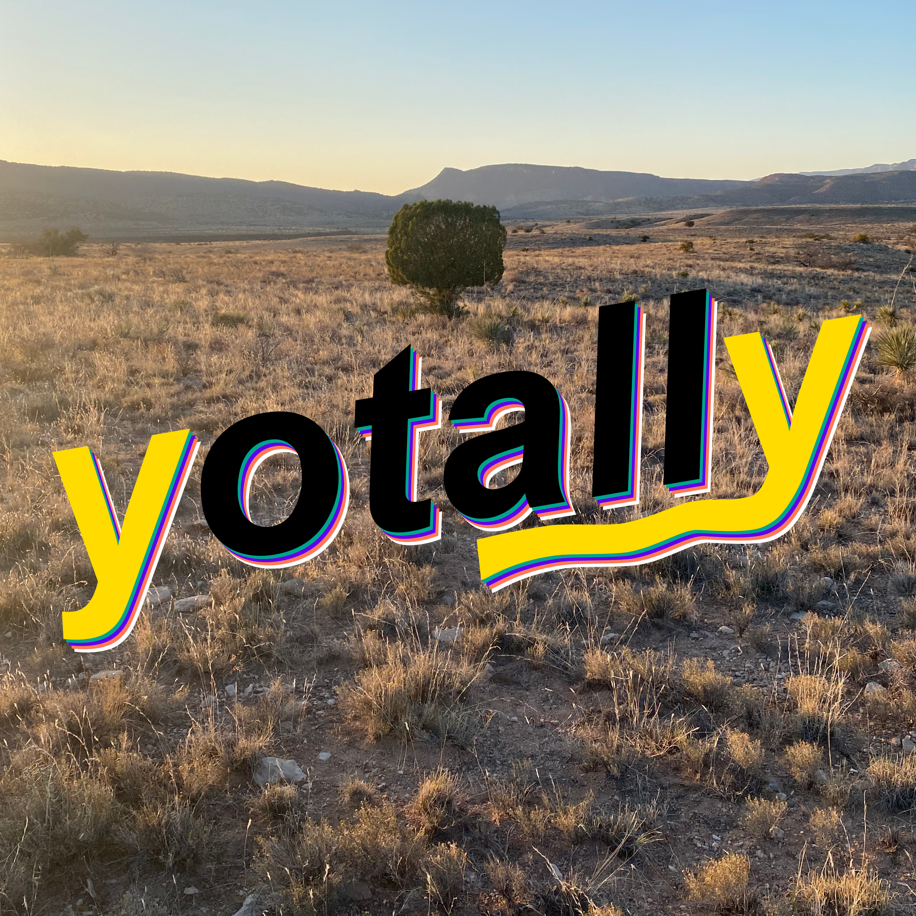 it's a tree with the word yotally under it, nice gold field